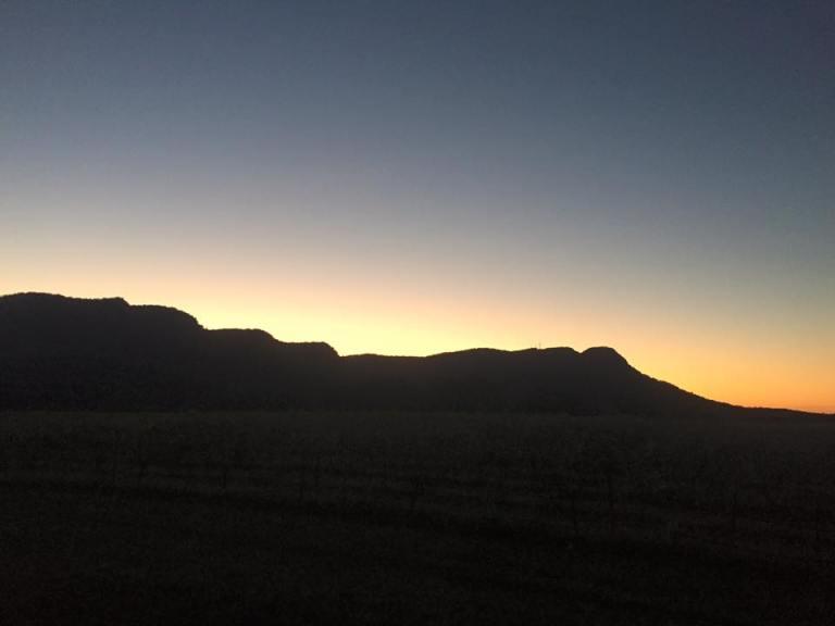 tyrrells sunset