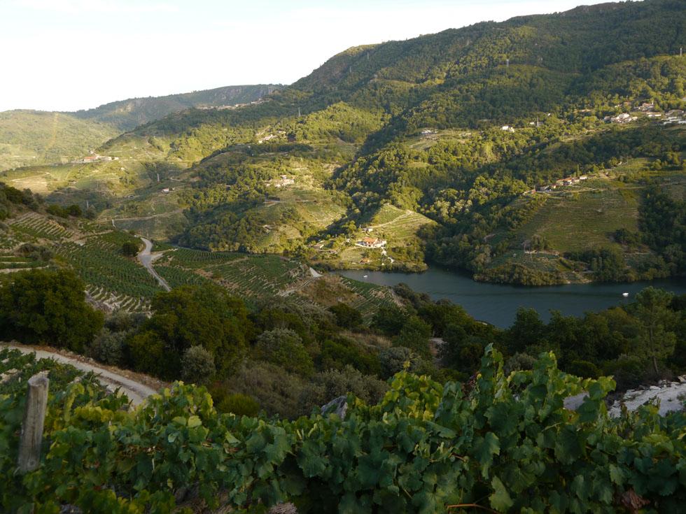 ribeira_sacra_landscape