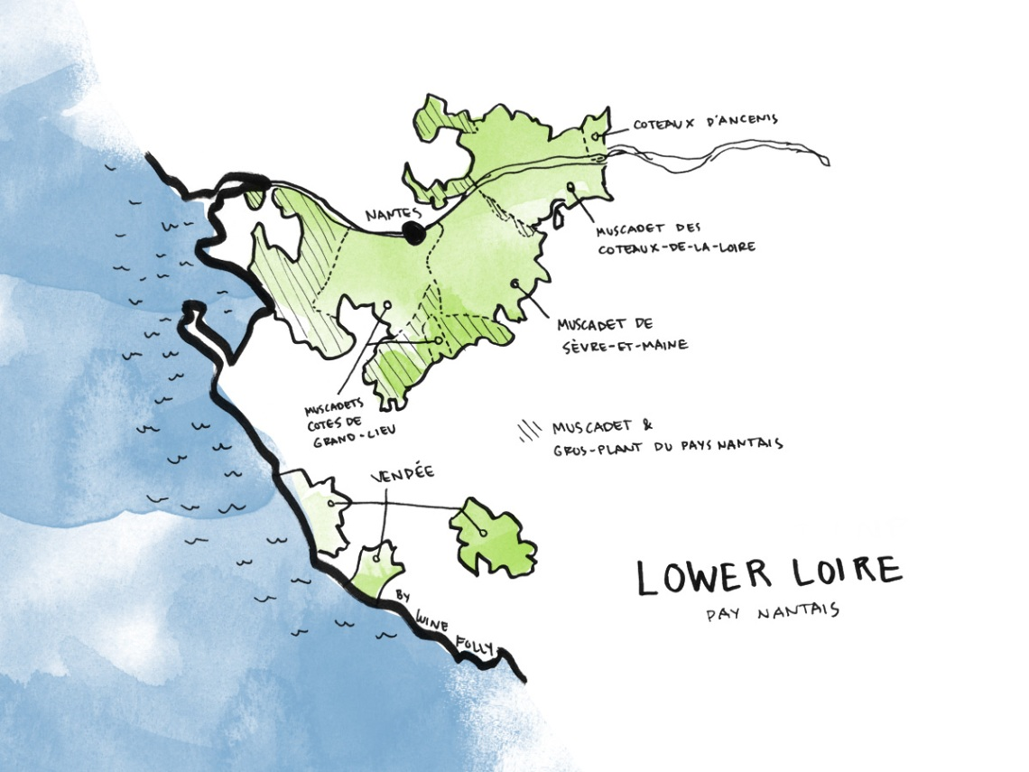 Loire-Valley-WIne-Map-Lower-Pays-Nantais-Folly